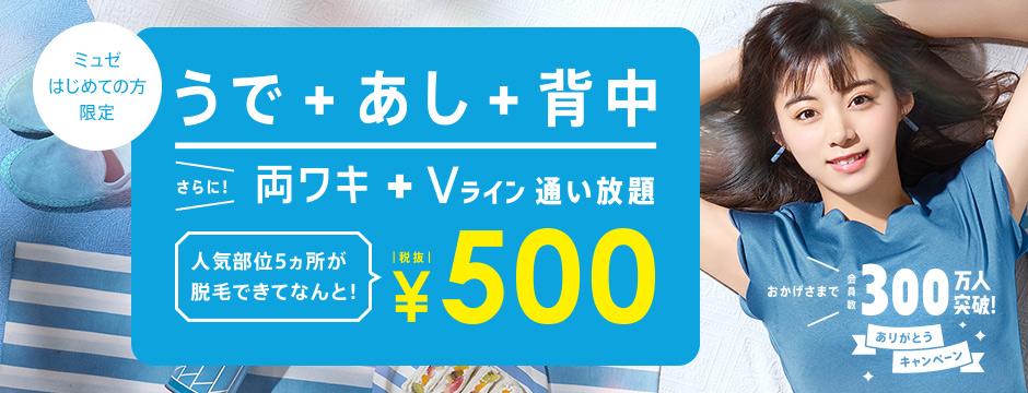 うで+あし+背中 さらに両ワキ+Vライン通い放題 ¥500