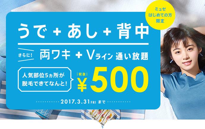 うで+あし+背中 さら両ワキ+Vライン通い放題¥500