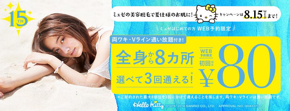 両ワキ、Vラインは通い放題!全身22カ所から8カ所選べて3回*通えて80円キャンペーン