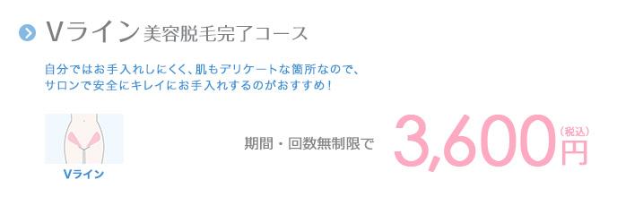 Vライン美容脱毛完了コース 3,600円(税込)